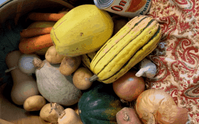 Savor the Season with Squash & Root Veggies